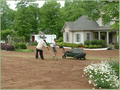 Sand-Sational Lawns - Lawn care sugarhill | lawn care suwanee | lawn